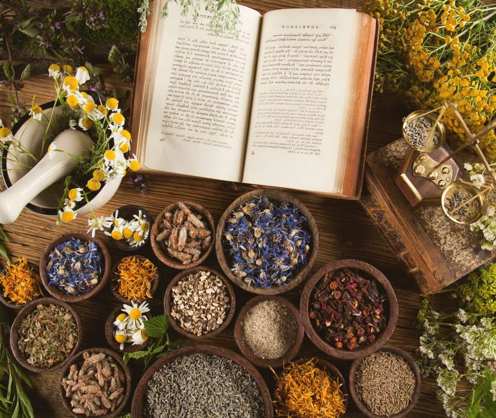 Natural medicine of pharmacy on wooden table background